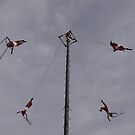 Flyers IV - Voladores by Bernhard Matejka
