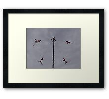 Flyers IV - Voladores Framed Print