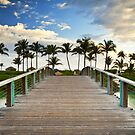 Paradise Beach Tropical Palm Trees Islands Summer Vacation by Dave Allen