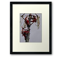 Flyers II - Voladores Framed Print
