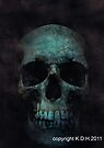 skulls 002 by Karl David Hill