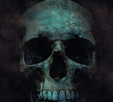 skulls 002 by Karl David Hill