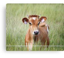 Cute Cow! Canvas Print
