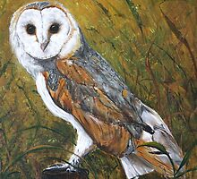 Barn Owl  by Loreen Finn