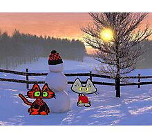 Two Cats Show Of  A Snowman Photographic Print