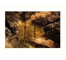 East Devon Layers ..34 Art Print