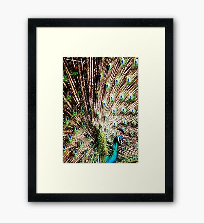 I'm just a bird  Framed Print