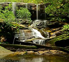 Ghost Of Somersby Falls. by Julie  White