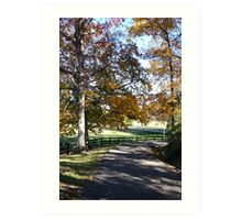 Country Road - Nature Photography Art Print