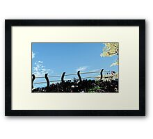 The fence. Framed Print