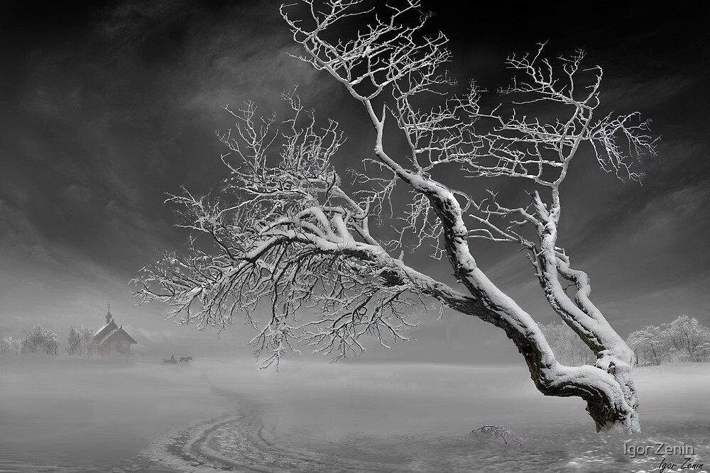 Winter Dusk by Igor Zenin