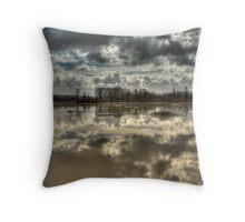 Big Muddy River Throw Pillow