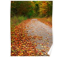 Alone amongst the leaves of Fall Poster