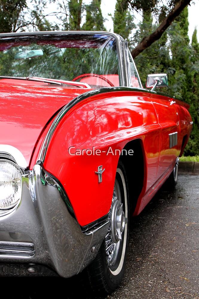 Ford Thunderbird 1963 Model by Carole-Anne