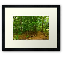 Peaceful Green Trees - Impressions of Forests Framed Print