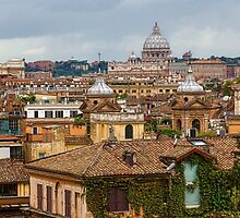 Messy, Fascinating and Wonderful - the Roofs of Rome by Georgia Mizuleva