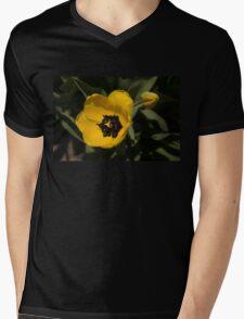 Yellow Tulip Mens V-Neck T-Shirt
