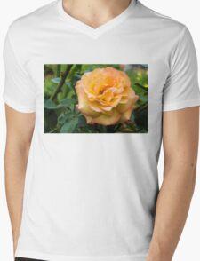 Early Summer Blooms Impressions - Elegant Peach Rose Mens V-Neck T-Shirt