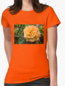 Early Summer Blooms Impressions - Elegant Peach Rose T-Shirt