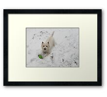 You did say you wanted to lose some weight right? Framed Print
