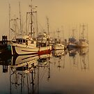 Misty Moorings by Wendi Donaldson Laird
