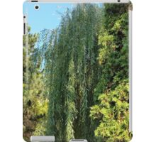 willow and two fir trees iPad Case/Skin