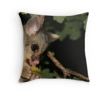 Melon is my favourite... Throw Pillow
