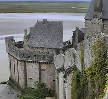 Mont St.Michel ( 9 )  by Larry Lingard-Davis