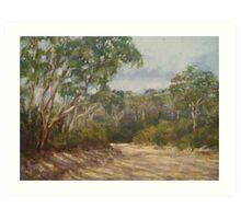 Mt Blackheath track Art Print