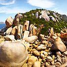 Granite Taste Buds by Adam Gormley