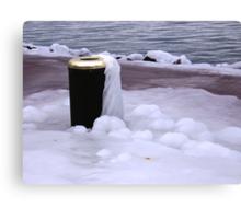 Frozen Bin  Canvas Print