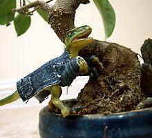 Bonsai Raptor by Rhiannon D'Averc