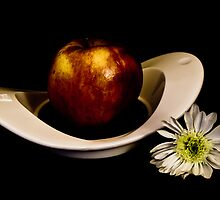 Requiem for an Apple by Maggie Deegan