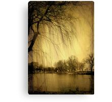 Weeping Willow © Canvas Print