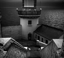Wicklowhead Lighthouse, Ireland by Royston Palmer