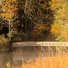 Fall view of the lake by KSKphotography