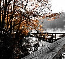 Boardwalk west side of lake  by KSKphotography