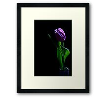 Tulip - Painted with Light 1 Framed Print