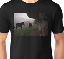Horses and a Misty Abbey Unisex T-Shirt
