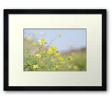 yellow cups - for amanda Framed Print