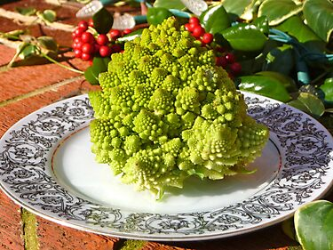 Fractal Cauliflower by nealbarnett