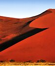 Bold Sculptural Dune, Namibia by Carole-Anne
