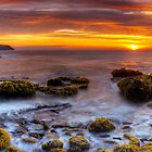 Cape Schanck 05 by Sam Sneddon