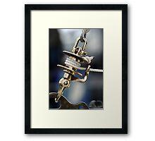 Bronze Roller Furler Framed Print