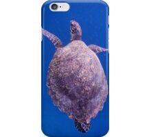 Hawksbill Turtle in Lombok, Indonesia iPhone Case/Skin