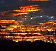 Tucson Sunset #1 by Scott Switzer