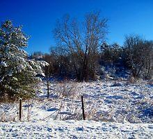 quiet snowy morning by LoreLeft27