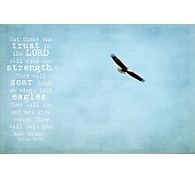Eagle's Wings Photographic Print