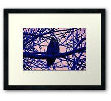 Owl in the Shadows Framed Print