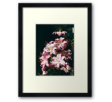 Tower of Lilies Framed Print